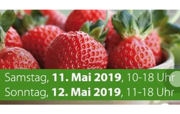 11.05.2019-12.05.2019 – GARTEN & GAUMEN IN TÜBINGEN